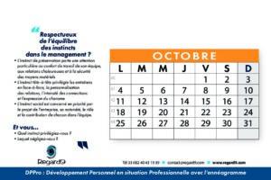 REGARD9 calendrier 12